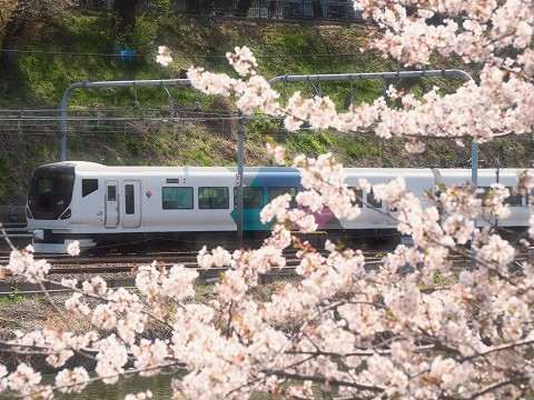 E257系@飯田橋'18.3.31