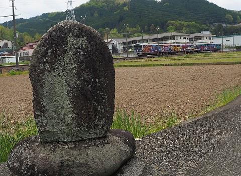 伊豆箱根鉄道3000系@牧之郷'18.4.14-1