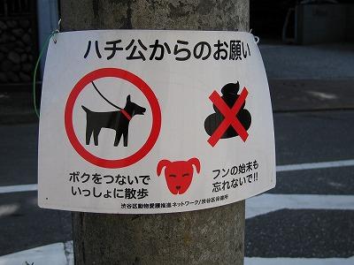 Notice_hatiko