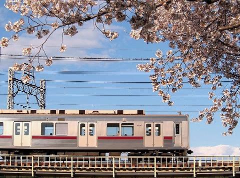 東武9000系@柳瀬川'20.3.24