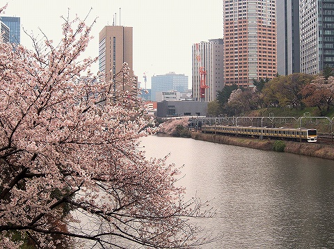 E231系@飯田橋'20.3.31