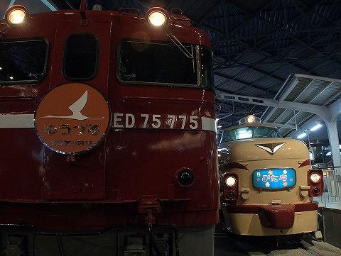 ED75‐775&クハ481形@鉄道博物館'20.6.20